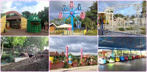 Park, Ferris Wheel, Rides, Ostrich, Theme Park and Bump Car